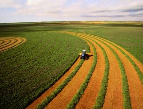 Μικροδάνεια και εγγυήσεις για αγροτικά έως 25.000 ευρώ